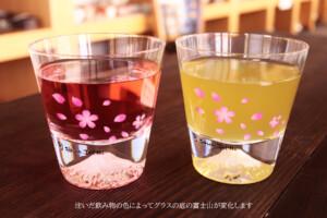 冷感桜舞富士山